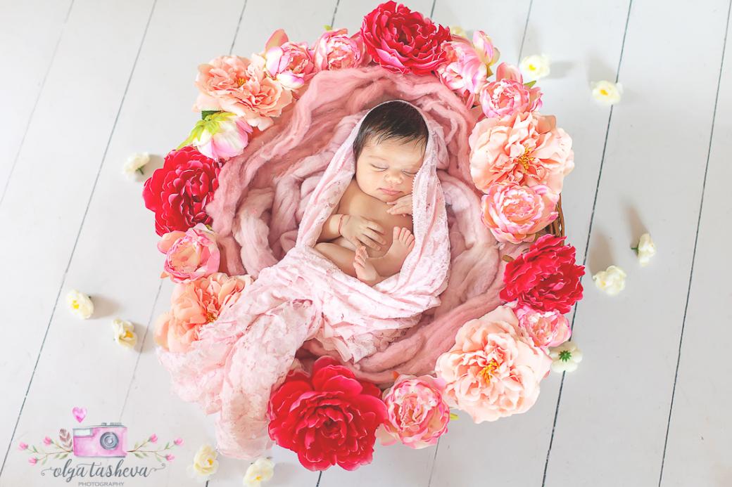 Фотосесия на новородено Никол при фотограф Олга Ташева. Фото студио Варна. Детска, бебешка и семейна фотография-1
