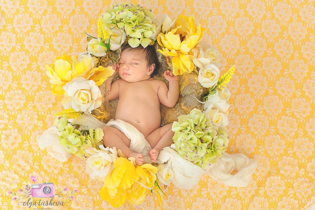 Фотосесия на новородено Никол при фотограф Олга Ташева. Фото студио Варна. Детска, бебешка и семейна фотография-3
